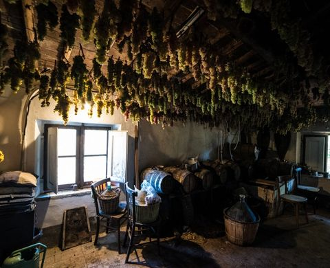 A TRADITIONAL HOME WINERY